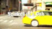 دوربین مخفی فوق العاده از مار در تاکسی