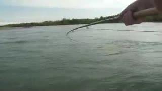 ماهیگیری را ببینید و لذت ببرید