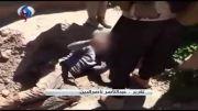 قتل 81 مرد و ربودن 180 زن ایزدی توسط داعش