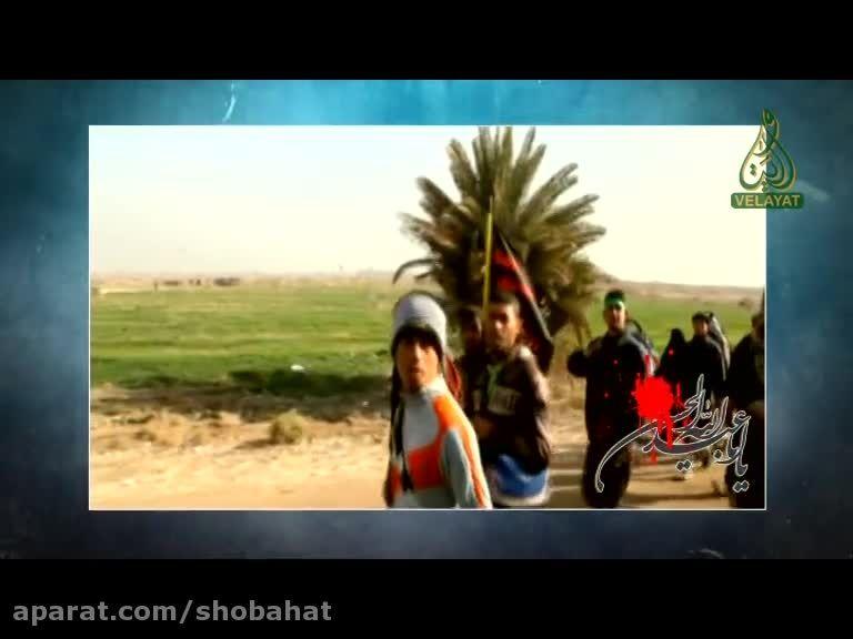 حضور علمای اهل سنت در مسیر پیاده روی اربعین حسینی