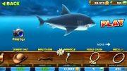 Hungry Shark Evolution   بازی زیبای تکامل کوسه گرسنه WP