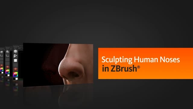 Sculpting Human Noses in ZBrush
