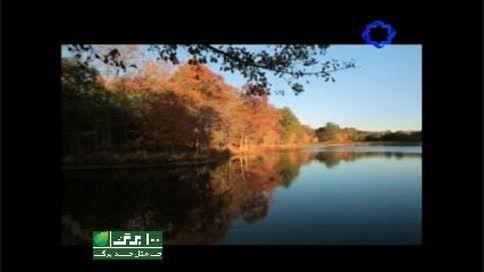 نماهنگ حریق خزان با صدای علیرضا قربانی