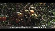 فروش ورمی کمپوست ( تولید کمپوست ) www.compostforosh.com