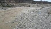 طغیان رودخانه ها و جاری شدن سیلاب در چرام