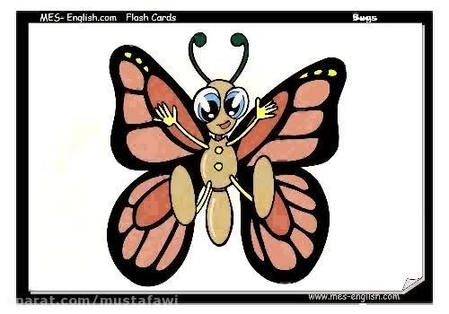 آموزش کلمات جدید زبان انگلیسی به کودکان (حشرات) 1