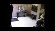 دزدی که در حین دزدی دستگیر شد !!