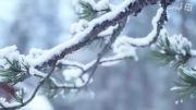 زمستانی شاد با محصولات تاکو فشن آلمان -alo.ir