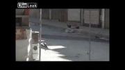 شکار تروریست توسط تک تیرانداز ارتش سوریه