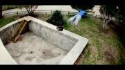 قویترین ویدئو پارکور و فری رانینگ ایران توسط فرشاد بیگلری
