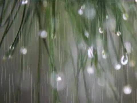 پنجره خاطره ها :شعر از مشیری ،خواننده  رضا رضا پور