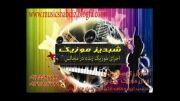 موزیک شبدیز - حنا حنا(عروس و داماد) - اجرای موزیک زنده