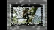 موزیک ویدئو دیدنی و زیبای حسن پناهی به نام بهرام
