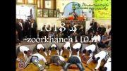 ضرب شنو استاد محمد کارگر و مرشد قاسم کاظمی امیرکبیر