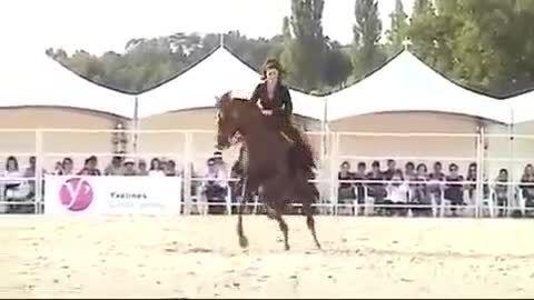اسب سواری و رقص اسب خیلی باحاله وقشنگ