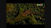 نسیم آفرینش در شبکه نسیم-58