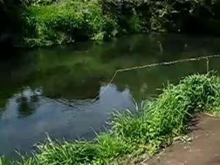 ماهیگیری با قلاب در طبیعت زیبا (اموزشی)