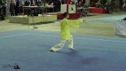 یازدهمین دوره مسابقات جهانی ووشو - تای جی چوان بانوان  - طلا