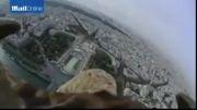 پرواز زیبای عقاب برفراز آسمان پاریس