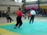 ضربات زیبا در نیو کونگ فو توسط افشین مردانی