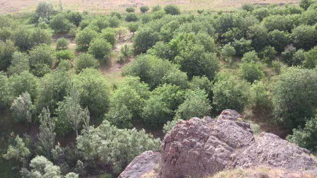 طبیعت گردشگری قلعه جوق ملکان