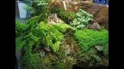 ریپاریوم غرفه گروه آب سنگ در نمایشگاه بین المللی گل