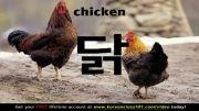 آموزش زبان کره ای (یادگیری لغات با عکس؛ حیوانات اهلی)