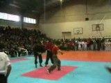 همایش کونگ فو استان اصفهان hemayesh kungfu esfahan