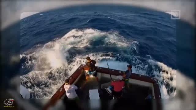 وحشتناک ترین و خطرناک ترین صید نیزه ماهی سیاه