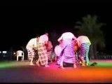 اجرای رقص محلی بوشهری-چار دستمال