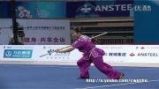 ووشو،مسابقه داخلی چین فینال نن گوون،لین فن ، مقام اول