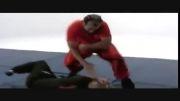 دفاع ضربه هوک در وینگ چون ابماس