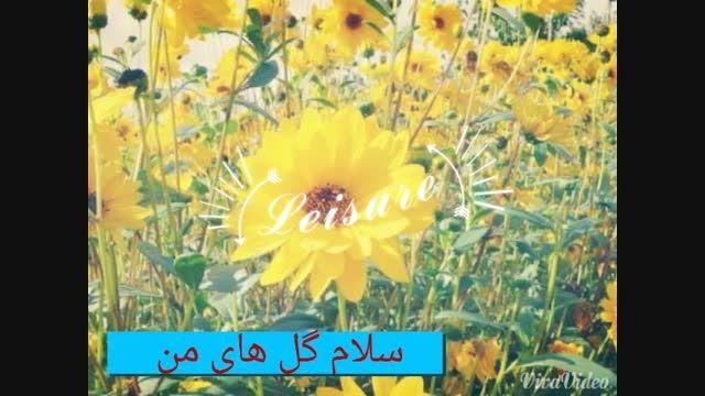 تقدیم به همه ی دنبال کننده هام )