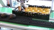 استفاده از رباتهای هوشمند ساخت پنیوماتیک فستو در خط تولید و بسته بندی Tripod