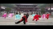 اجرای فرم تای جی چوان - چن 18 - توسط Master Fang Zhong