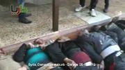 کشته شدن تعداد زیادی از تروریست های سوریه توسط ارتش سویه