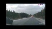 فرار از دست پلیس