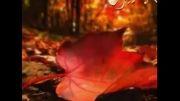 شب پاییزی - موزیک بی کلام