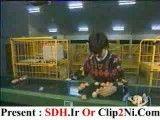 دانلود دوربین مخفی - کلیپ تخم مرغ های شیطون(خیلی باحاله!!! از دست ندین)