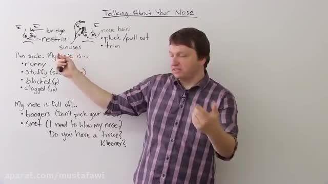 آموزش لغات جدید زبان انگلیسی ( صحبت درباره ی بینی ! )