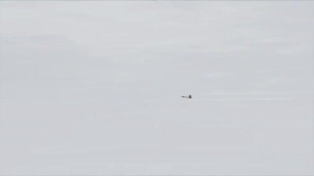 جنگنده سوپر هورنت F-18 برای شبیه ساز الماس