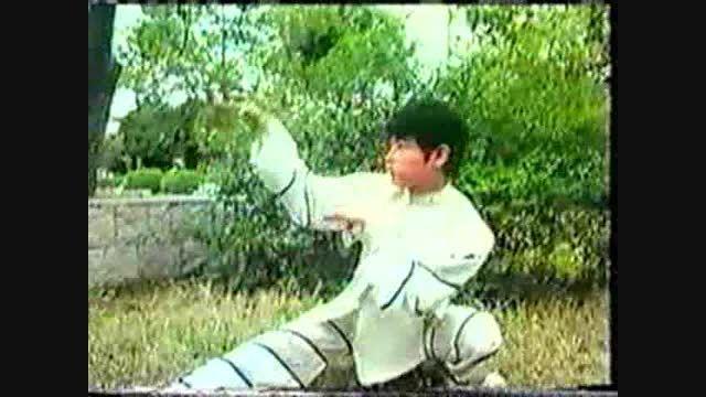 ووشو؛ اجرای مبارزه سنتی در تکنیک مشت مار و پنجه عقاب