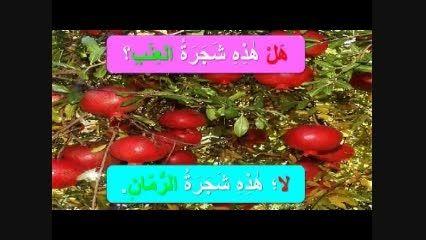آموزش واژگان درس دوم قسمت اول عربی هفتم