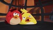 انیمیشن پرندگان خشمگین فصل دوم قسمت 8