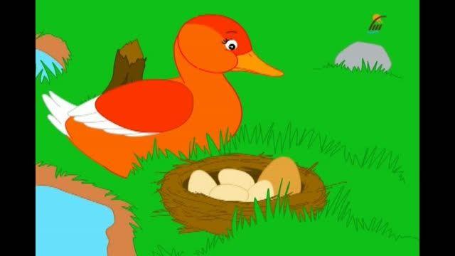 "قصه انیمیشنی ""جوجه اردک زشت"""