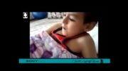 فیلم موبایلی پوریا، راه یافته بخش اصلی