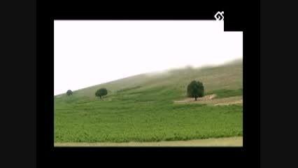 زندگی نامه شهید جاوید الاثر فردین شریفی