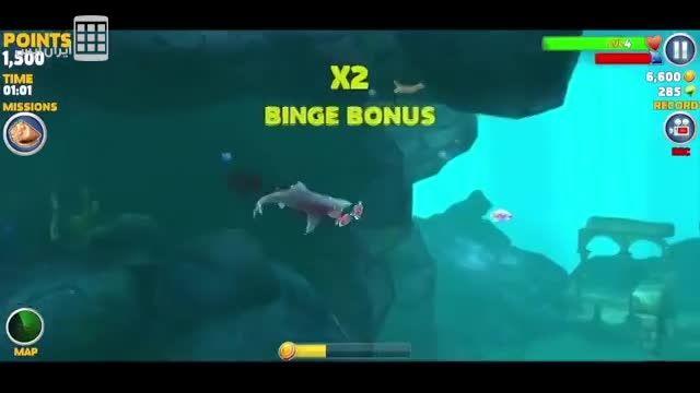 کوسه گرسنه - Hungry Shark Evolution