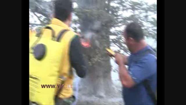 آتش سوزی در ارتفاعات جنگلی این بار در گرگان + فیلم