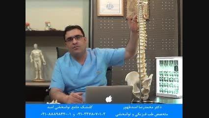آناتومی و ساختار ستون فقرات